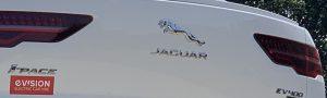 White Jaguar I-Pace Logo